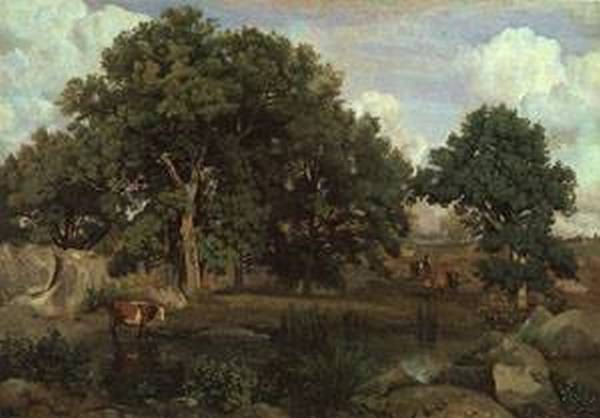Forest of fontainebleau 1846 xx museum of fine arts boston